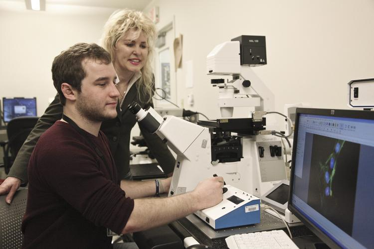Zachary Olmsted, a junior at the College of Nanoscale Science and Engineering, studies human skin cells through a fluorescent microscope while his adviser, Janet Paluh, looks on. Olmstead was one of 271 recipients of this year's prestigious Barry M. Goldwater Scholarship.