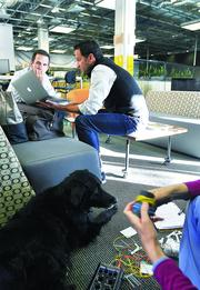 Patrick Quinlan, CEO, right, talks with Philip Winterburn, CIO of Convercent, while his dog, Jasmine, gets acupuncture.