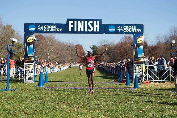 NCAA championship events the city of Louisville was awarded include men's and women's cross country.
