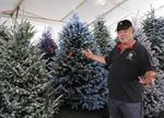 How I ... Moved my Christmas tree business from Ala Moana Center
