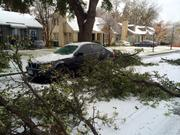 Limbs sit next to a car in Dallas after being felled by ice.