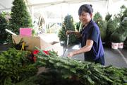 Dale Hironaka lightly waters the Christmas wreaths with tree preservative six to seven times a day.