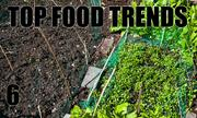No. 6. The National Restaurant Association's annual What's Hot culinary forecast makes predictions for food trends in 2014. Hyper-local sourcing such as restaurant gardens, is the No. 6 food trend.