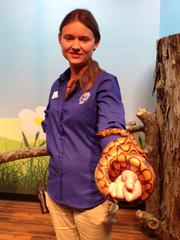 Kayla Flippo, an employee at the Tennessee Aquarium, holds a rainbow boa constrictor that people can touch. Flippo said she met visitors earlier in the day from Albany, NY. They were in town seeing one of their children, who attends a college in the area.