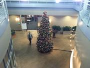 A Christmas tree adorns the front lobby of the office space.
