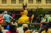 Photos from One Spark   As part of the One Spark Festival, a large Yellow Duck floated in the water gardens of Hemming Plaza.  Click here to see more photos.