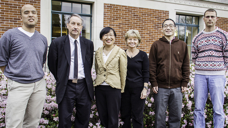 Patrick Chiang, Jon Dorbolo, Siew Sun Wong, Melinda Manore, Bo Zhang, Christopher Scaffidi are part of an OSU research team who received a $5 million USDA grant to help teens stay active and eat healthy.