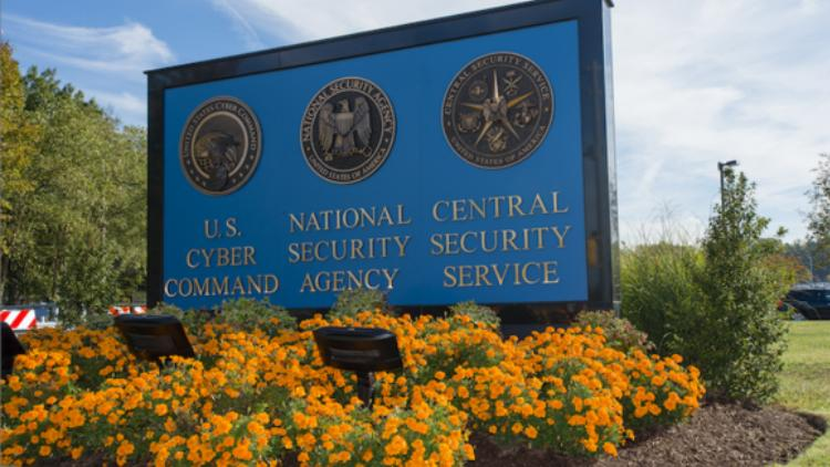 The NSA's collection of Internet data within the United States employs reasonable safeguards to protect the rights of Americans, according to the Privacy and Civil Liberties Oversight Board.