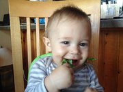 The Sbarras' first-born munches on some salad greens grown by Volcano Veggies.