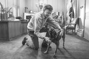 Governor John Hickenlooper works with his new dog, Sky. He said he got the dog for his son, Teddy from a rescue shelter. In May 2013, Governor Hickenlooper signed a bill designating shelter pets as the official state pet. (January 2013)