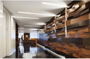 """The elevator lobby features Ironweed, a """"rhizomic"""" root system that 22squared believes best represents its strong and interconnected culture. -- Macri"""