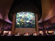 The casino features a 16,000-gallon saltwater aquarium with sharks, stingrays and tropical fish.