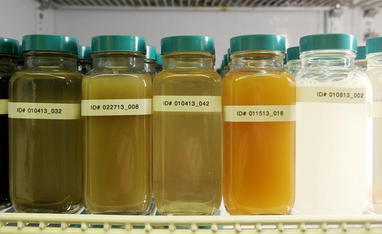 Examples of various flow back water from fracked wells in storage at Kroff Well Services in Ambridge.  JOE WOJCIK PHOTO