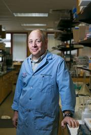 UMBC faculty member Mark Marten, part of the Mycoinnovation group working to develop new technology with peptides that farmers could add to their chicken feed to get chickens to grow bigger, in his UMBC lab.