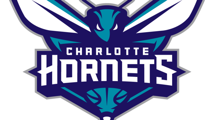 The new primary logo of the Charlotte Hornets