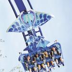 SeaWorld Orlando to debut new roller coaster in 2016