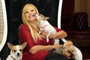 Rhonda Shear, president of Shear Enterprises LLC with her dogs, Lexie, Sweetie and Tiki.