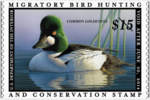Senate bill introduced to raise price of duck stamp