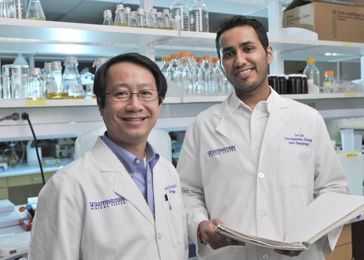 Dr. Lu Le, assistant professor of dermatology at UT Southwestern and senior author of the study, left, with his co-author Amish Patel.