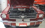 Frontal view of 1965 '2+2' Ford Mustang.