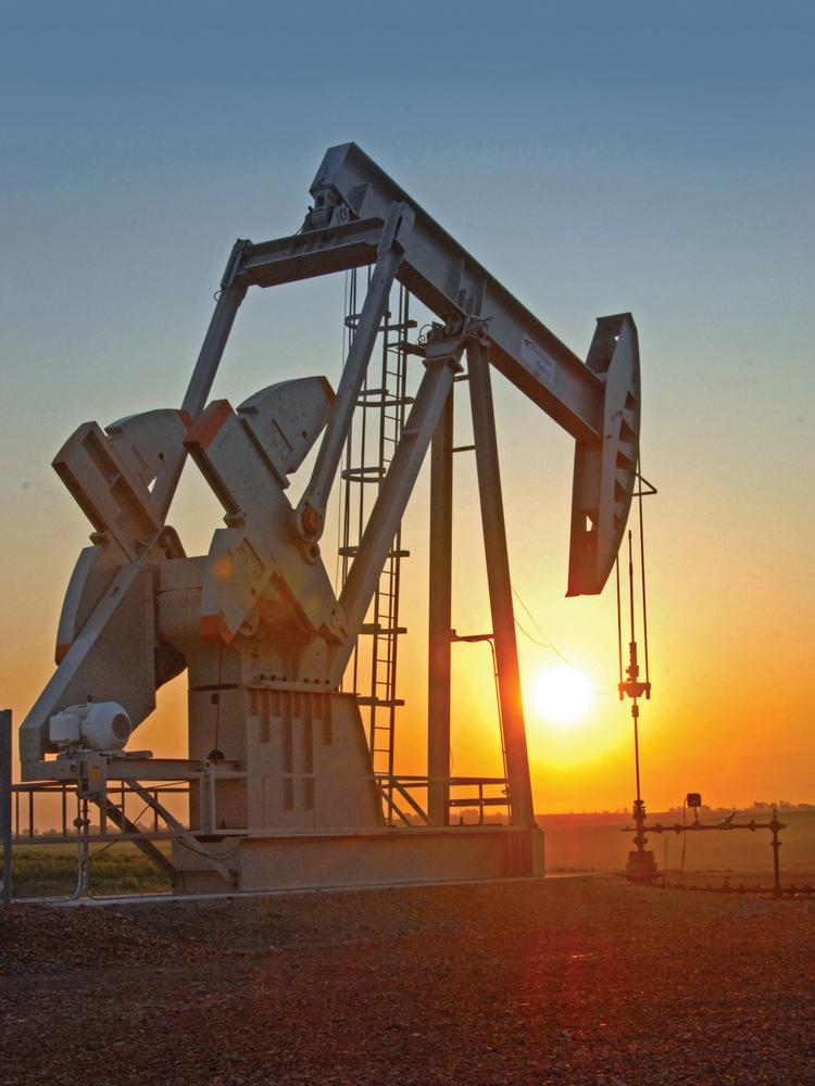 Reef Oil & Gas announced that it has completed drilling six wells in the Bakken Shale in North Dakota.