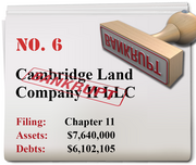 Cambridge Land Co. of West Linn filed for Chapter 11 Oct. 16.