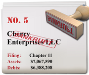 Cherry Enterprises of Portland filed for Chapter 11 on April 15.