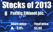 No. 8. Pacific Ethanol Inc. of Sacramento (NASDAQ: PEIX). The company's share price rose 6.0 percent in 2013, to end the year at $5.09.