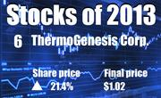 No. 6. Thermogenesis Corp. of Rancho Cordova (NASDAQ: KOOL). The company's share price rose 21.4 percent in 2013, to end the year at $1.02.