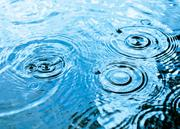 Even before the session started on Jan. 8, bills were filed in the Senate and House to repeal the storm water management fee.