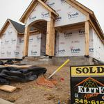 Texas bests U.S. rate in median household income, new-home purchases