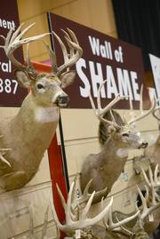 The Minnesota Department of Natural Resources displayed its wall of shame, an exhibit of animals that were poached or otherwise taken illegally over the last year.