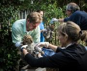 Baby leopards receive their vaccinations at the Jacksonville Zoo and Gardens.