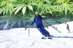 Colorado-bound skiers who smoke pot could face a wipeout back home