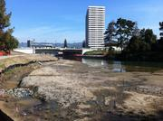 The estuary and tidal marsh link Lake Merritt to San Francisco Bay. The area is home to dozens of species of birds.