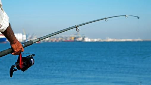 11 million Americans go saltwater fishing every year, generating $70 billion for the U.S. economy.