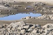 A puddle of water at Folsom Lake.