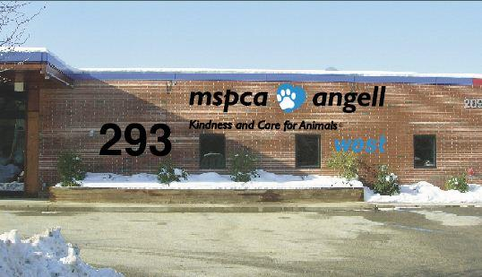 MSPCA-Angell to open an emergency animal hospital in Waltham next month.