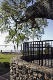 Overlooking the St. Johns River from the staircase, just above the grotto.