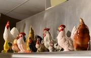 Chickens given to The Coop Restaurant owner Karen Hanson over the years by patrons