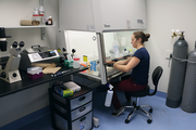 A researcher checks on laboratory samples at the OTRADI bioscience incubator. OTRADI launched the six-businss incubator last year and it filled within weeks.