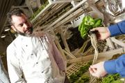 Brian Gojdics, executive chef for Tutta Bella, checks out a butter lettuce grown at the Millionair Club farm in Belltown.