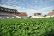 A new stadium with fancy new turf that makes us forget that Mud Bowl year.