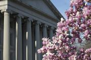 The Treasury Department stands behind a flowering magnolia tree in D.C. on April 8.