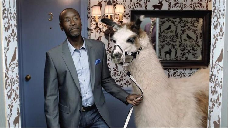 "Don Cheadle and his llama friend made a cameo appearance in Bud Light's ""Epic Night"" Super Bowl ad."