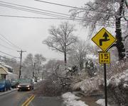 A tree limb brought down by Wednesday's ice storm blocks part of Old Lancaster Road in Bryn Mawr, Pa.