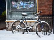 A lonely bicycle is locked up outside the Upstate Corals shop on Jay Street in Schenectady.