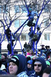 Fans climbed the trees at Westlake Park to see the Seahawks victory parade. Seattle police early on estimated that more than 700,000 people turned out of the Seahawks Super Bowl victory parade on 4th Avenue in downtown Seattle.