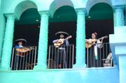 A traveling mariachi band serenades the crowd from all over the property. They get around.