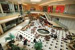 International Plaza getting first-in-Tampa Bay stores